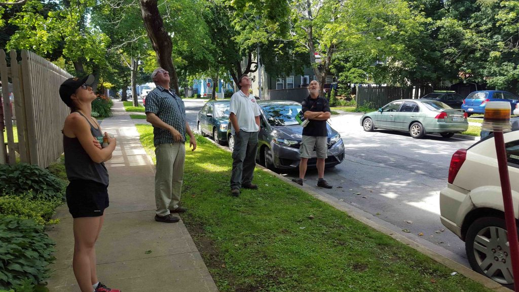 Halifax Students Ensure the Replacement of $270,000 Worth of Trees Under Warranty by Using Spatial Inventory and the Arrow 100