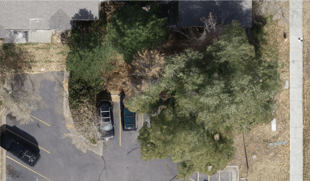 IMAGE - SUCCESS STORY - DDSI laser mapping - locates observed by vegetation