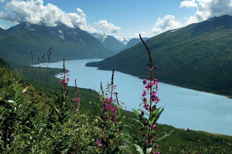 FIELD PHOTO – CASE STUDY – ANCHORAGE WATER - river