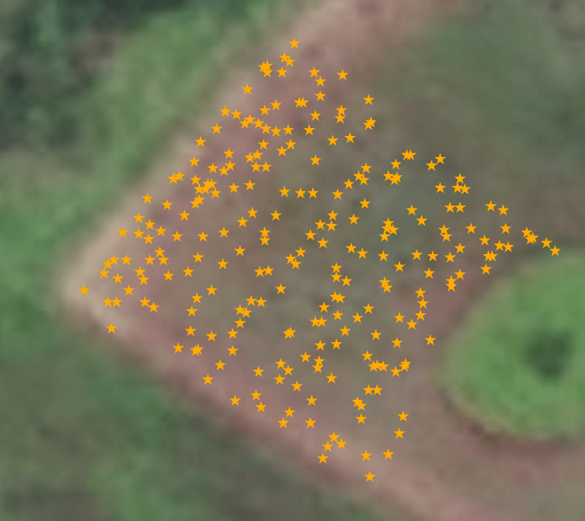 A section of the garden Brian Tucker originally mapped without high-accuracy GNSS receivers
